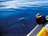 Inia ocean explorer