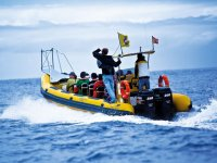 Sea and excursions Inia