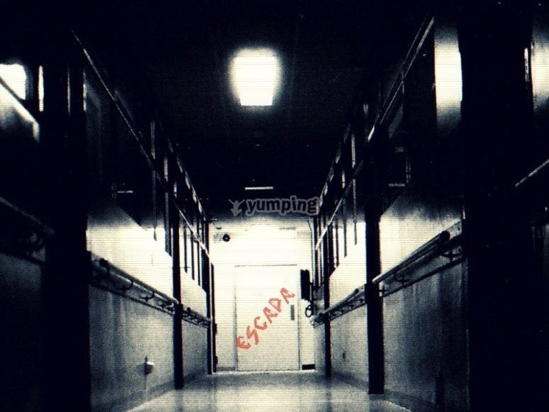 Escapa de la habitacion