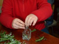 Taller de plantas en el aula de naturaleza