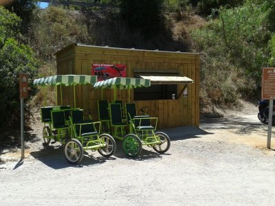 Quadricycle rental Via Verde Sierra de Cadiz 3h