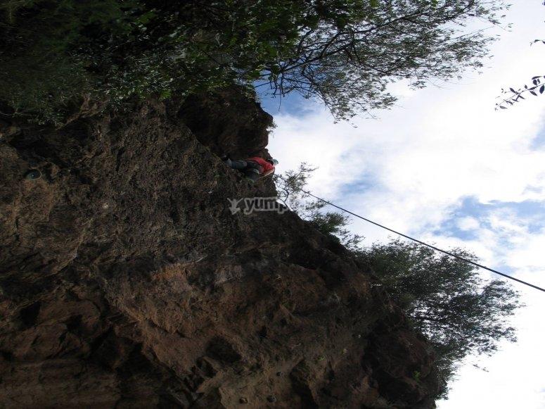 Disfruta de las alturas