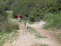 Rapel en cueva y despedida de soltero en Córdoba