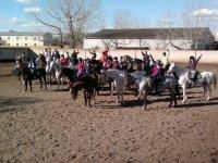 Grupo de alumnos con los caballos
