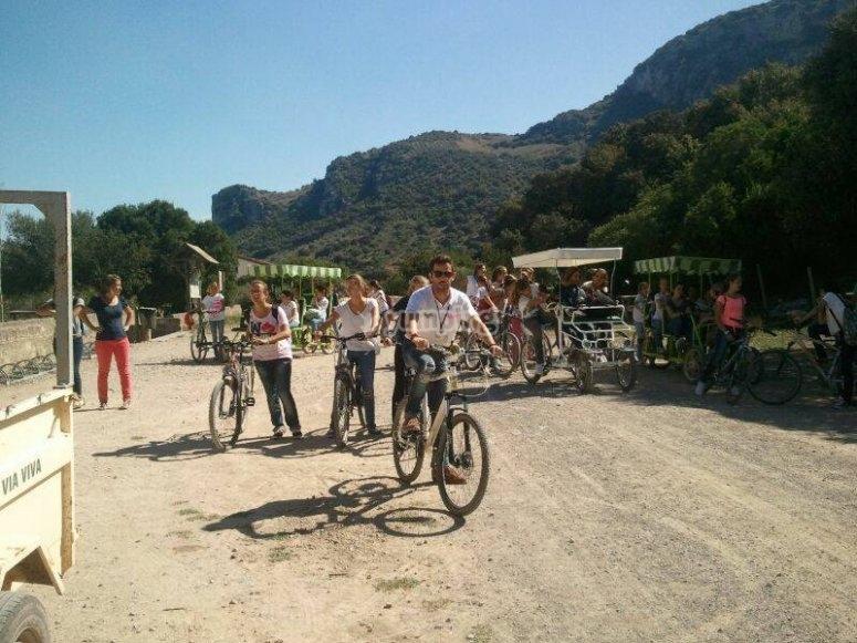 Alquiler bicicleta de 4 ruedas Cádiz