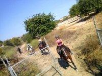马运行路线学骑