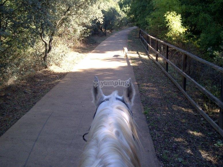 De camino a la villa romana
