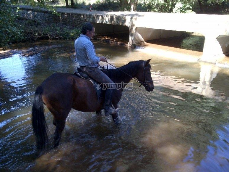 Refrescandose en el rio
