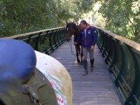 Pasando por el puente