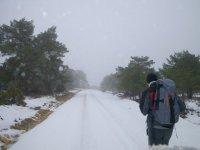 Senderismo Invernal