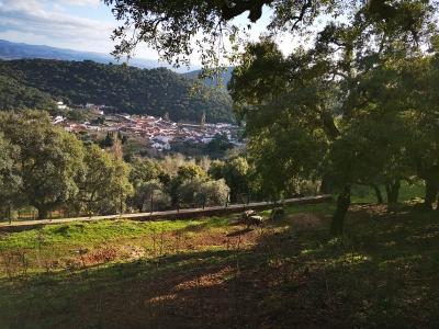 Visita a Sierra de Aracena por un día, para niños