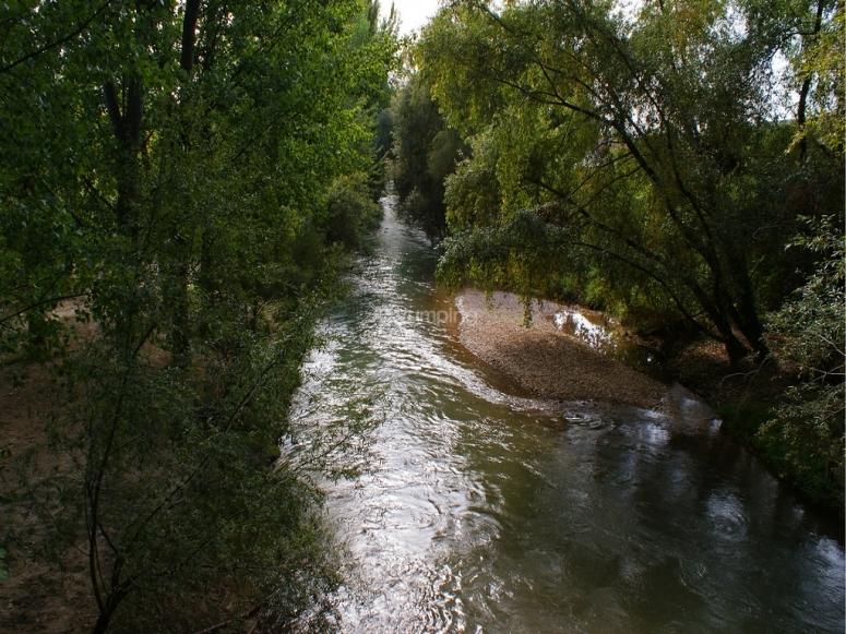 Guadalquivir y naturaleza