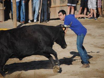 Despedidas de Soltera en Salamanca