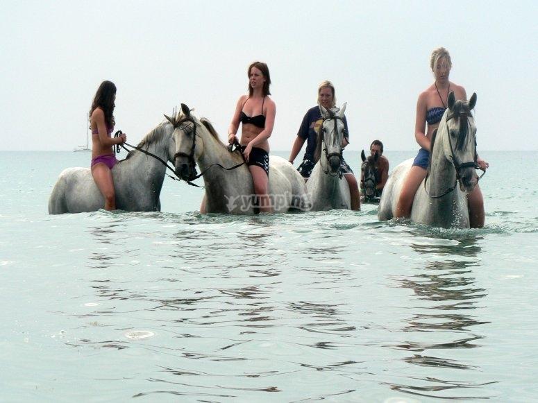 Baño con caballos