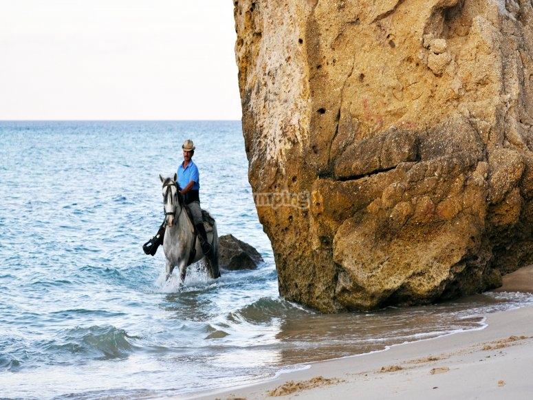 Roca en la playa del Chorrito