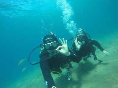 兰萨罗特岛的潜水课程与茶点