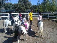 Clases de equitacion con ponis