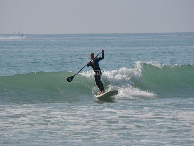 Disfrutad del paddle surf