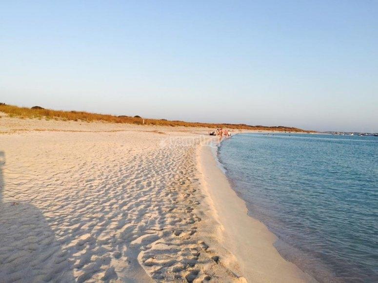 参观海滩福门特拉岛乘船