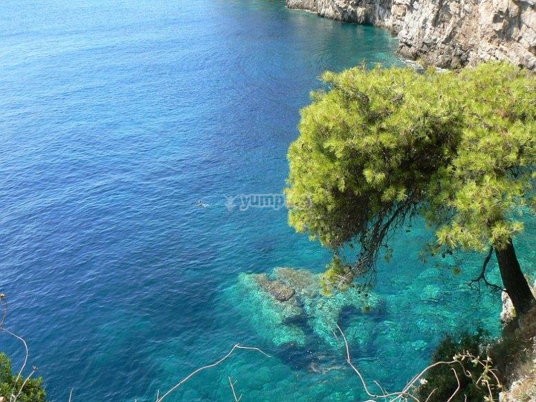 Agua del mediterraneo