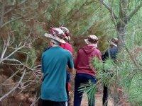 Láser tag en el bosque