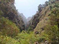 De senderismo por Tenerife