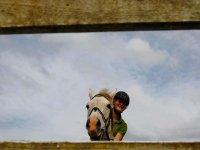 Ante un obstáculo con el caballo