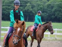 Riding lessons for all levels