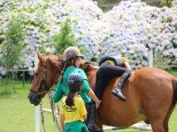 Niñas divirtiéndose con el caballo