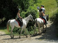 Siguiendo al guía con los caballos