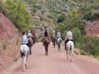 Rodeando el camino a caballo