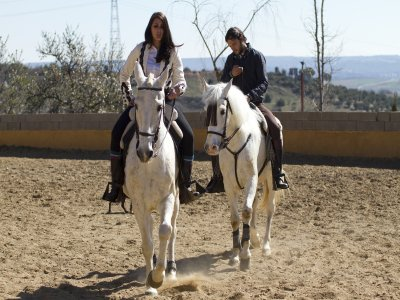 Relaxation w. Horses & Route in Colmenar Viejo