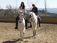 Relajación con caballos y ruta en Colmenar Viejo