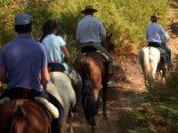 Rutas a caballo por la isla