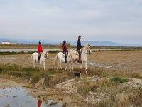 Knowing Tarragona on horseback