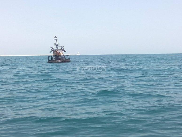 您将捕鱼的海洋