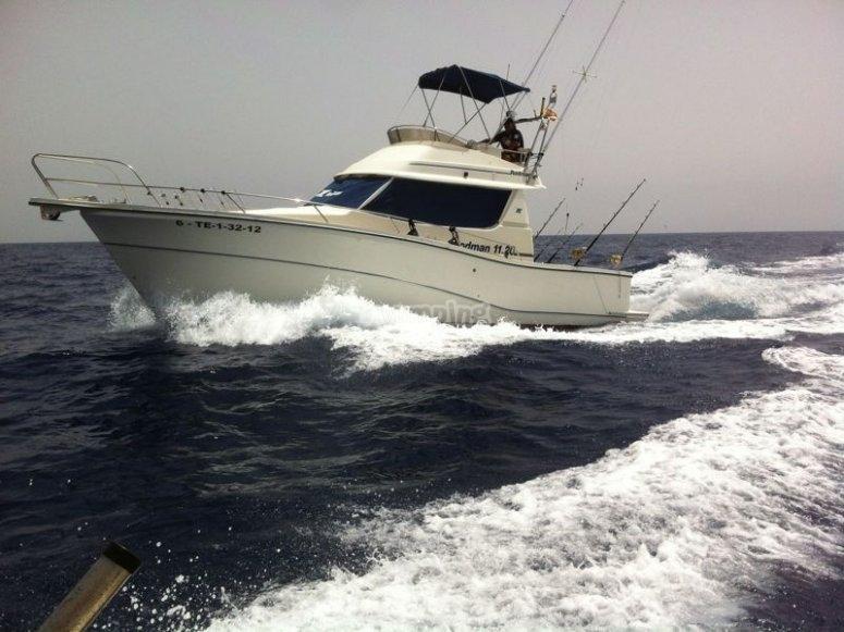 Barco de pesca Rodman