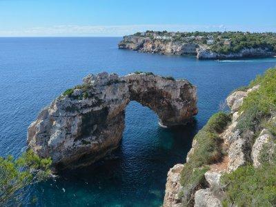 Excursión en barco Sea Rider en Mallorca 1h 30