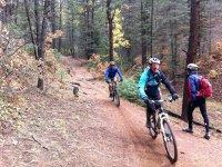 山地自行车山地自行车在一天之间