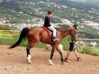 En caballo guiado
