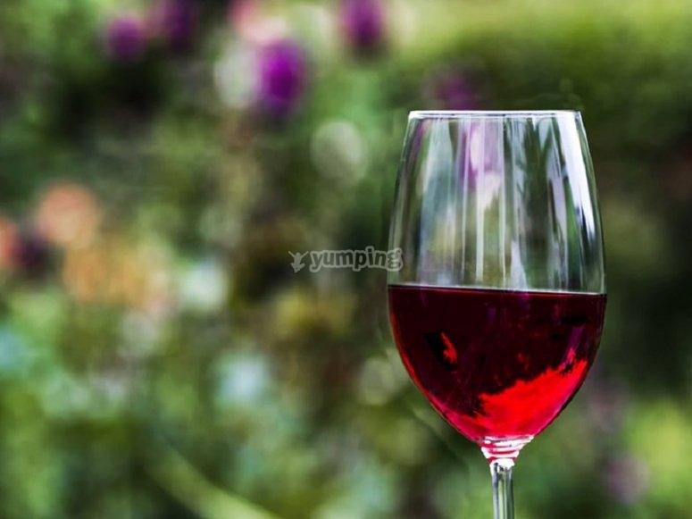 您将享受前所未有的葡萄酒