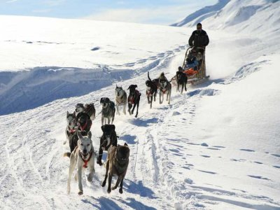 Skicenter Baqueira Mushing