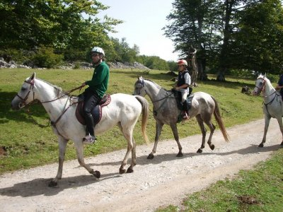 Equitazione a Lazkaomendi 1 ora