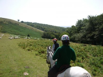 4h horseride in the baske mountains