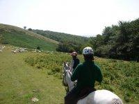 Equitazione montagne basche 4 ore