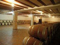 参观酒庄的酒窖