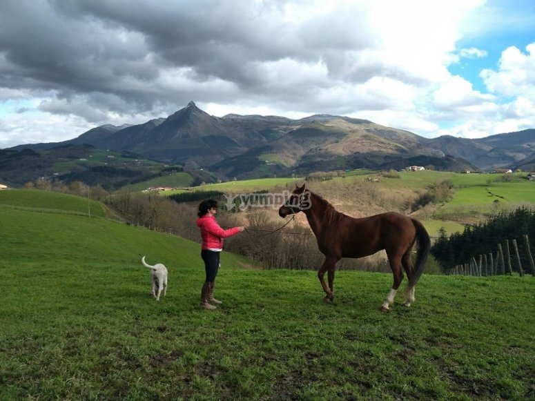 With the horse in Guipuzcoa