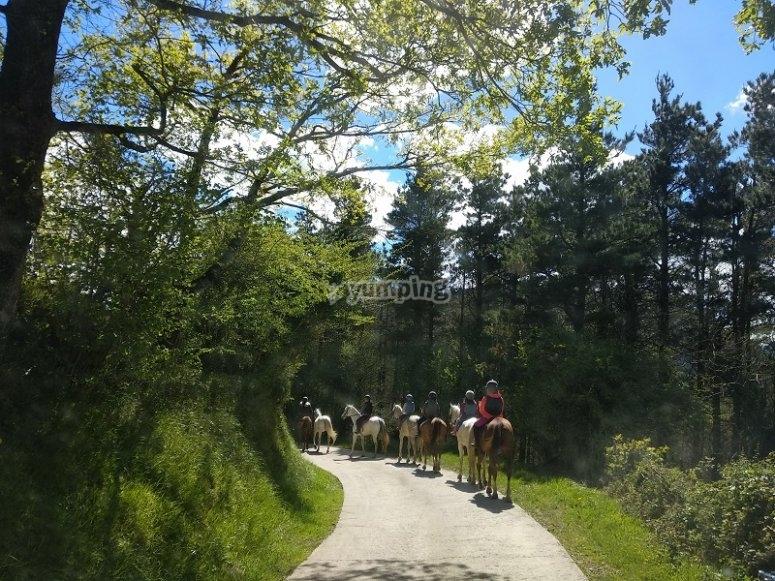 Camminare con il cavallo