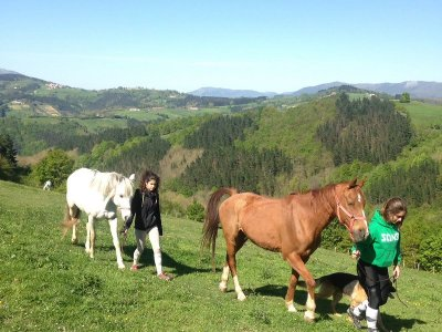 Stay-in horse Riding Camp in Guipúzcoa 2 weeks