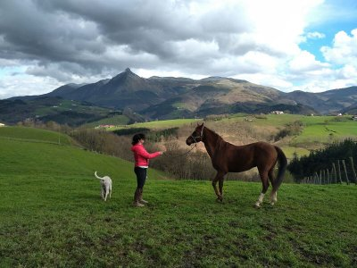 Horseback stay-in Camp in Basque Country 3 weeks